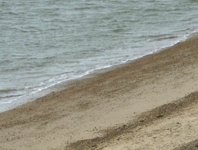 Three Dublin Beaches Fail EU Water Quality Tests