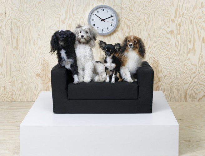 IKEA Launches Pet Furniture Collection