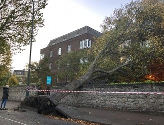 Pictures: Storm Ophelia Leaves Damage Trail Across Ireland