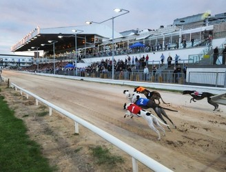 Win Tickets To A Fancy Dress Halloween Party In Shelbourne Park Greyhound Stadium