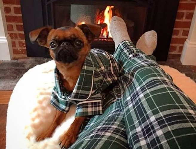 You Can Now Get Matching Pyjamas For You & Your Dog