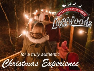 Win A Family Pass To Luggwoods & An Overnight Stay At City West Hotel