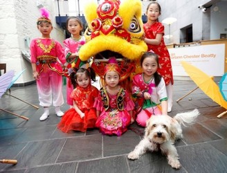 Dublin Gets Its Paws Up For The Year Of The Dog