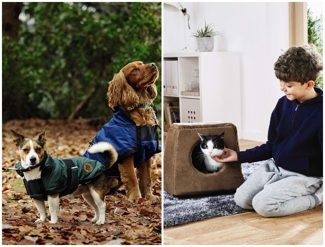 Aldi Launches New Pet Collection