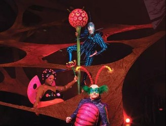 Why You Need To See 'Cirque Du Soleil: Ovo' When It Comes To Dublin