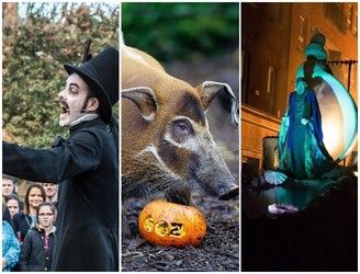 The Best Family Friendly Events On In Dublin Over Midterm