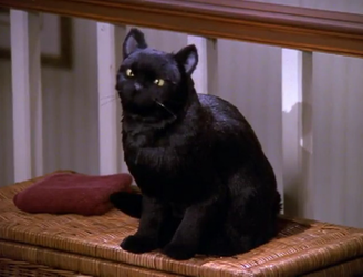 First Look At Salem In Netflix's Sabrina Reboot