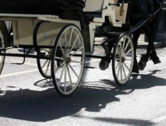 Man Hospitalised After Car Crash With Horse Carriage